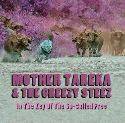 Tarek_album_cover
